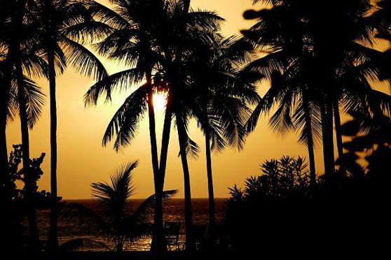 Reportage : Familiarisons-nous avec la Martinique !