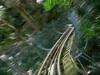 Faire de la 'luge' dans la forêt pluviale à Ocho Rios