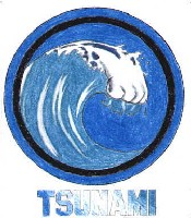 Les victimes du tsunami en Asie du Sud, pays par pays