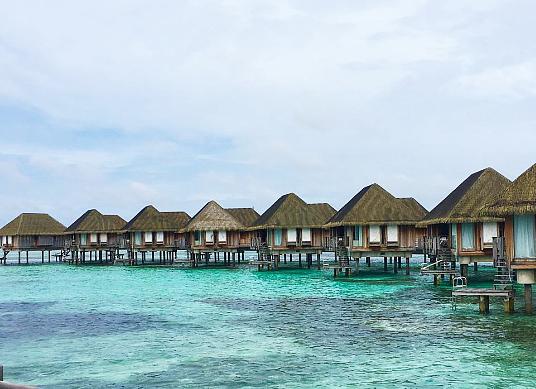 De retour du Sri Lanka : Club Med a fait vivre ses Circuits Découvertes à un groupe de partenaires du voyage