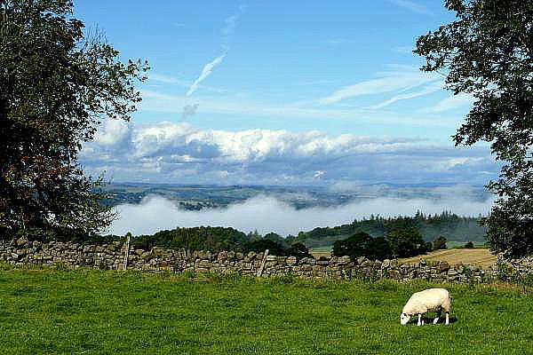 La belle campagne anglaise