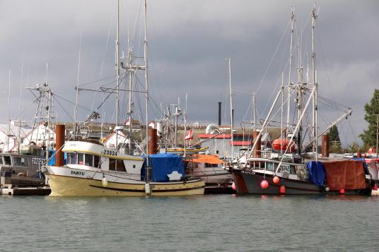 Dans le port de Steveston