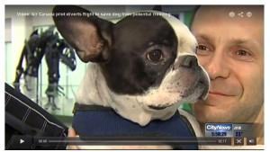 Un avion d' Air Canada se déroute pour sauver un chien